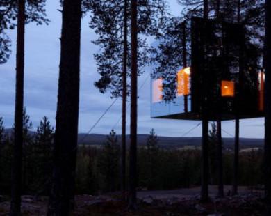 9 nhà nghỉ trên cây độc đáo nhất thế giới