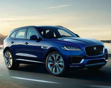 Jaguar F-Pace xe của năm