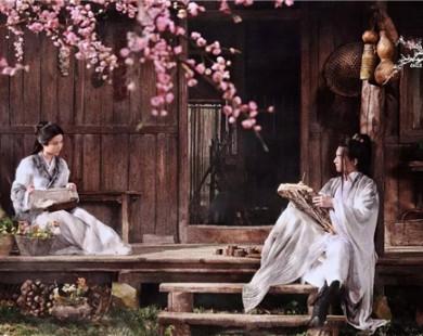 """""""Dạ Hoa"""" đẹp như ngôn tình giữa rừng hoa đào rực rỡ"""