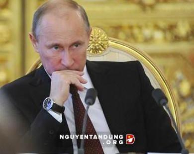 Mua gom trăm tấn vàng: Putin phòng thủ trước biến động