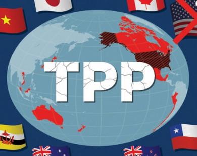 Vì sao Nhật sốt ruột muốn ký kết sớm TPP?