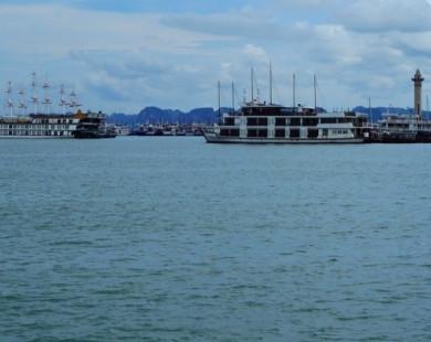 Hàng trăm chủ tàu du lịch nguy cơ phá sản
