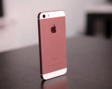 Điện thoại chụp ảnh đẹp nhất hiện nay bạn nên sở hữu