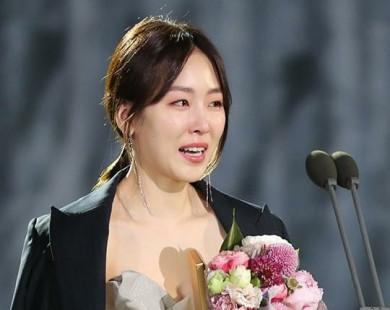 Chặng đường đầy nước mắt của Seo Hyun Jin